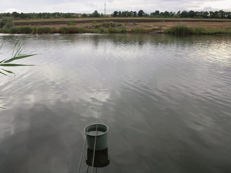 рыбалка на ставке заря
